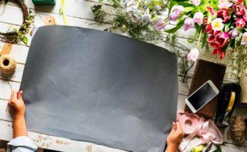 Увлечения и хобби для девушек список
