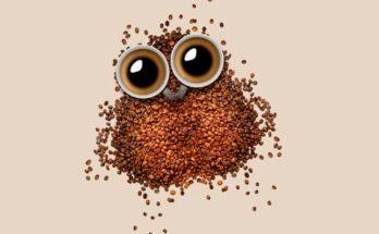 Чем можно заменить кофе для бодрости по утрам